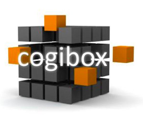 Cogibox